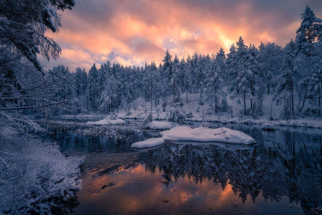Обои закат, сумерки, река, зима, лес, деревья, пейзаж картинки на телефон