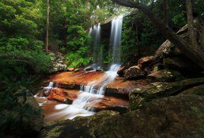 Фото бесплатно деревья, скалы, камни