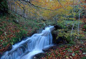 Бесплатные фото осень,водопад,скалы,водоём,речка,лес,деревья