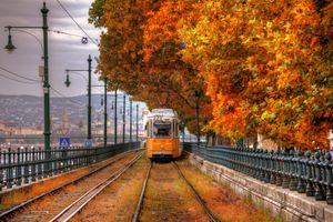 Бесплатные фото Budapest,Hungary,осень,трамвайный путь,трамвай,деревья,краски осени