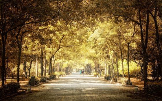 Фото бесплатно сквер имени Свердлова Нижний Новгород, природа, парки, гуляющие люди, настроение, листопад, солнечные лучи, тропинки, люди, живописные, деревья