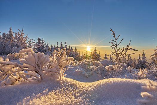 Фото бесплатно Шварцвальд, Германия, закат