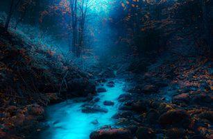 Бесплатные фото сумерки,река,камни,лес,деревья,осень,природа