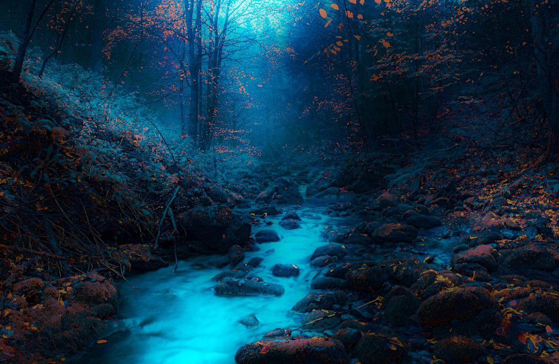 Обои сумерки, река, камни, лес, деревья, осень, природа картинки на телефон