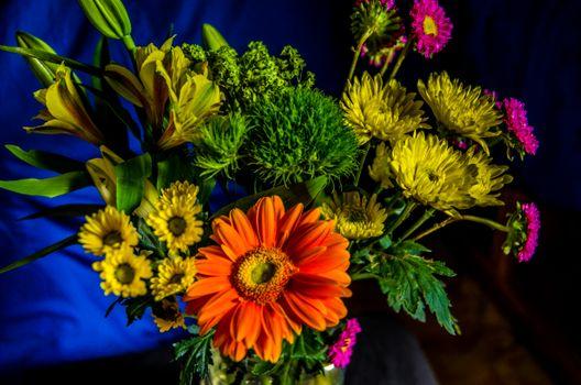 Фото бесплатно Красочный букет, цветы, красивый букет, флора