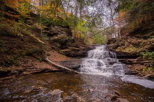 Заставки лес, река, Государственный парк Ricketts Глен