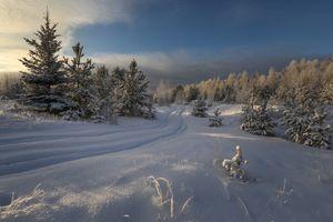 Заставки следы, закат, снег