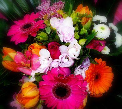 Различные цветы