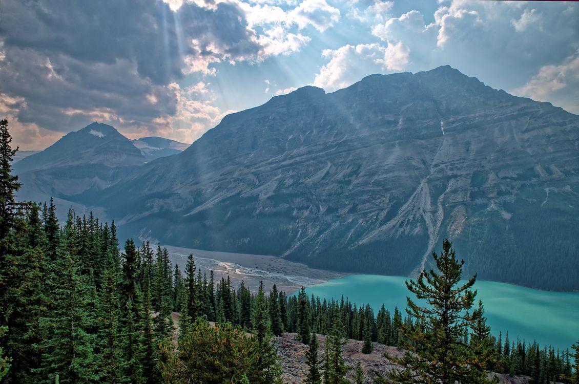 Фото бесплатно Peyto Lake, Banff National Park, Alberta, Canada, горы, деревья, небо, облака, лес, лучи солнца, день, лето, пейзажи