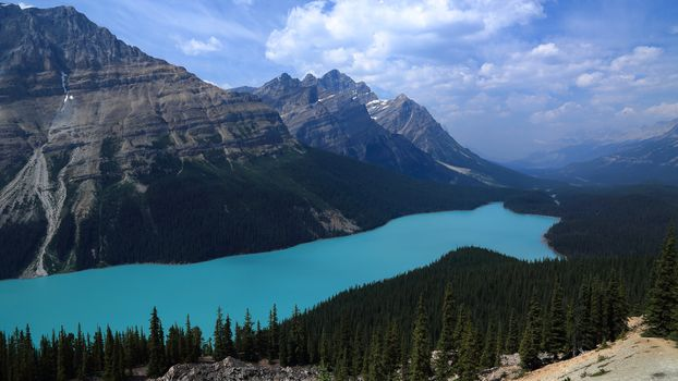 Photo free Peyto Lake, forest, clouds