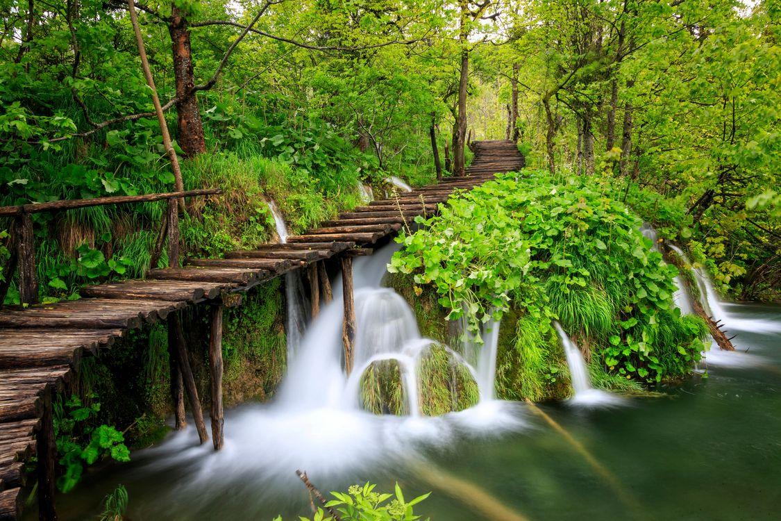 Лучшие парки мира · бесплатная заставка