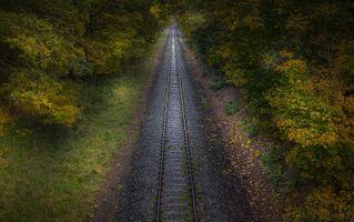 Фото бесплатно железная дорога, осень, растения