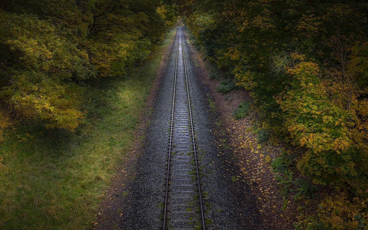 Фото бесплатно железная дорога, осень, растения - на рабочий стол