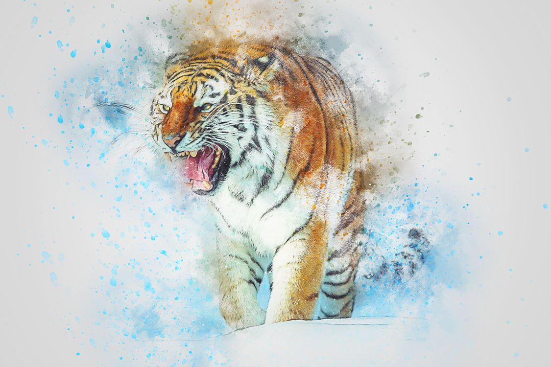 Фото бесплатно тигр, хищник, оскал, art, рендеринг
