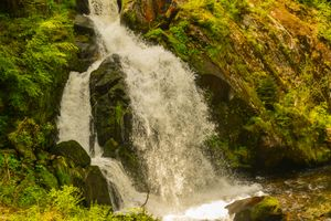 Заставки водопад, конечно, деревья