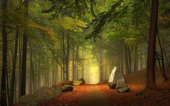 Фото бесплатно скалы, дорога, природа