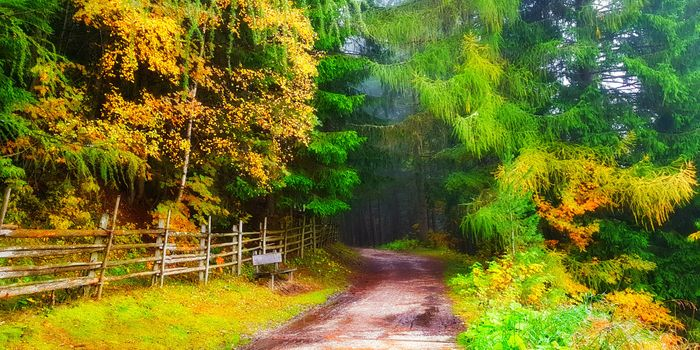 Beautiful autumn landscape · free photo