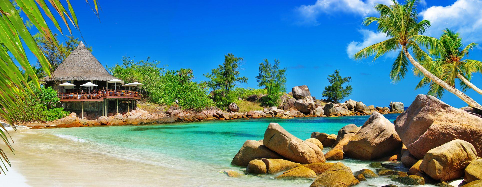 Обои Palm, sand, beach картинки на телефон