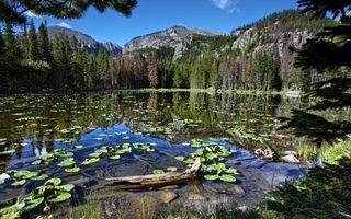 Фото бесплатно лес, озеро, гора