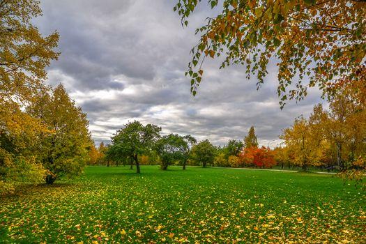 Фото бесплатно Царицынский музей-заповедник, пейзаж, осенние листья
