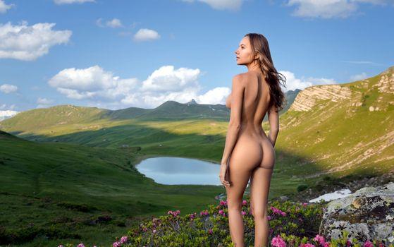 Фото бесплатно цветы, клевер, озеро