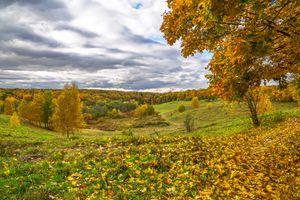 Фото бесплатно осенние краски, россия, природа