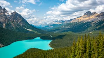 Photo free Canada, Peyto Lake, Alberta