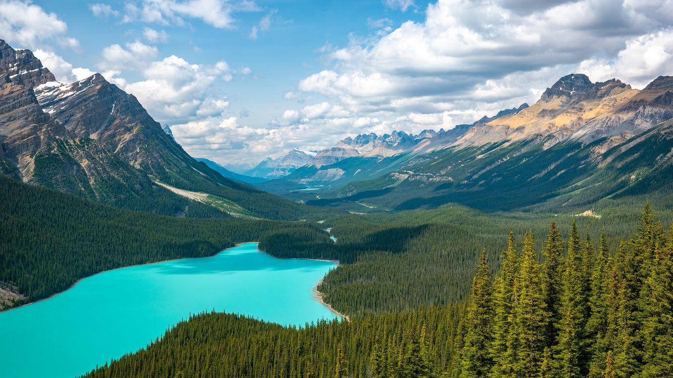 Фото бесплатно Canada, Peyto Lake, Alberta - на рабочий стол