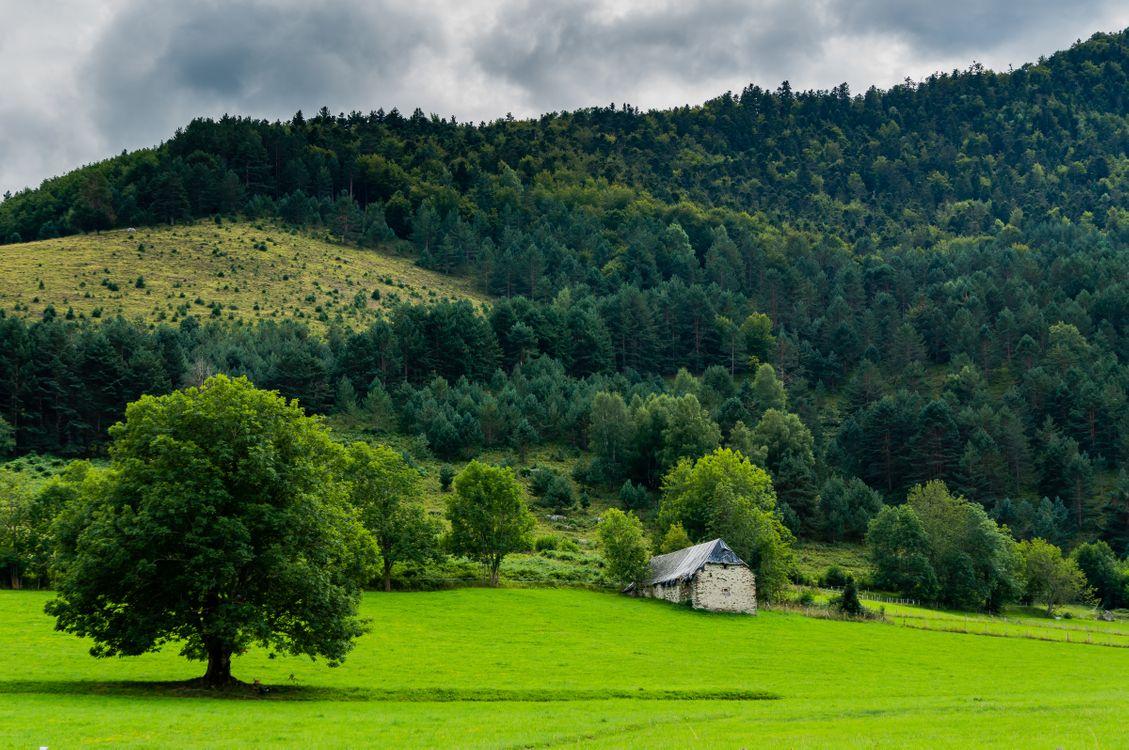 Фото бесплатно поле, холмы, деревья, домик, тучи, пейзаж, пейзажи