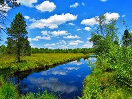 Фото бесплатно лето, озеро, пруд