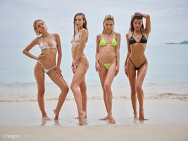 Фото бесплатно Красотки, Bikini Girls, сексуальная девушка