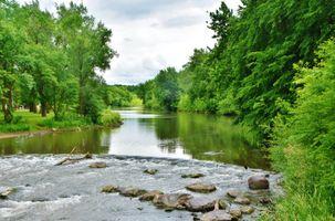 Заставки лес,деревья,камни,парк,река,пейзаж