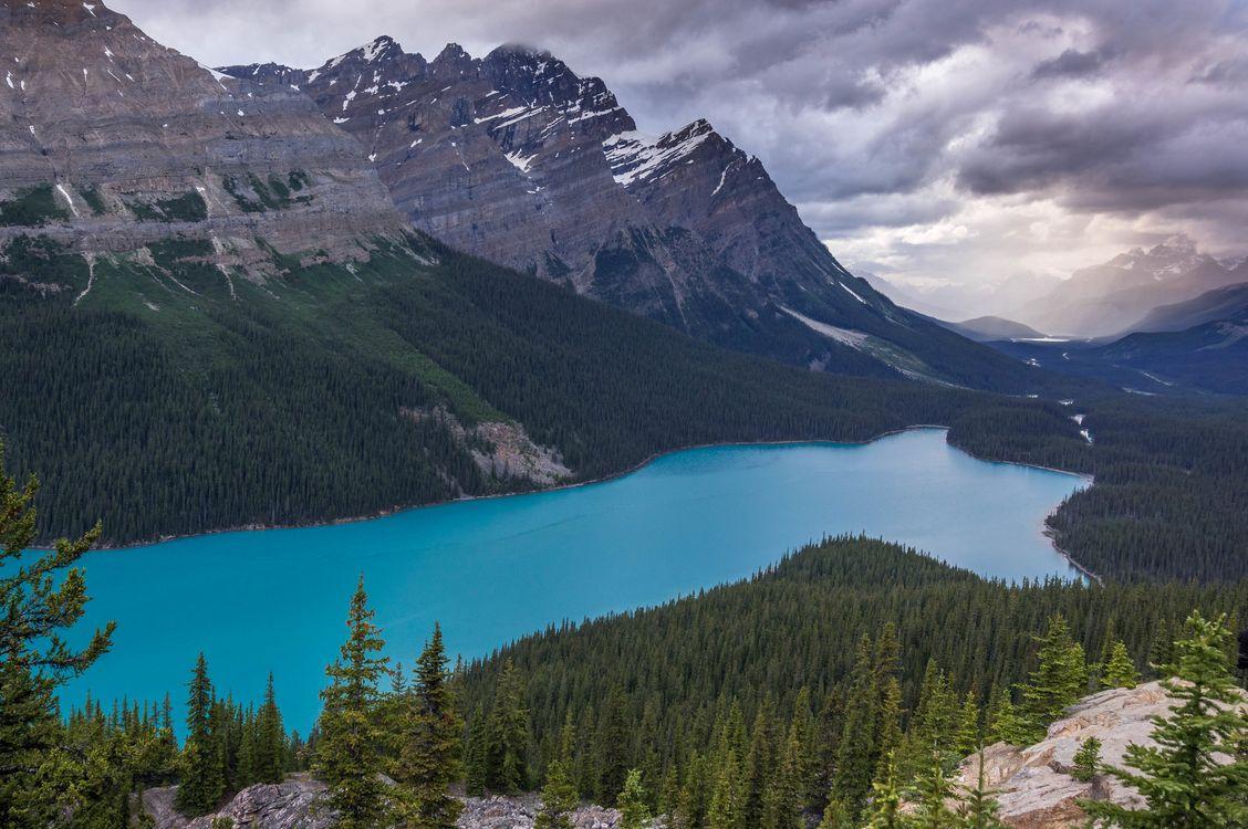 Banff National Park - Peyto Lake · free photo