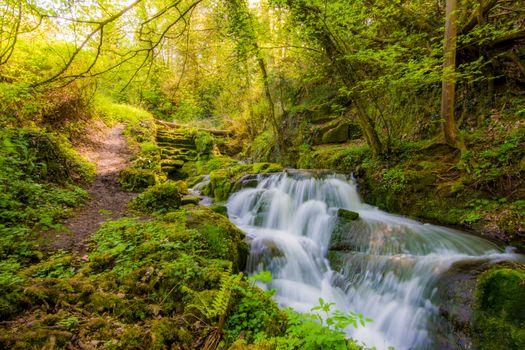 Photo free waterfall, river, Badger Dingle Waterfall