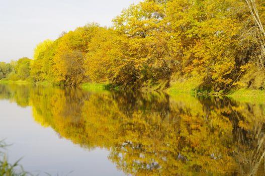 Бесплатные фото осенний берег,река,деревья,кроны,листопад