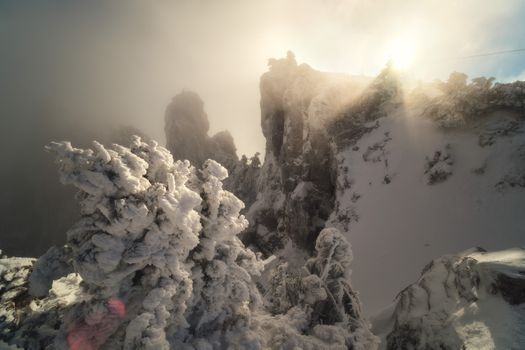 Снежные вершины Ай-Петри · бесплатное фото