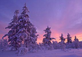 Заставки закат солнца, зима, снег