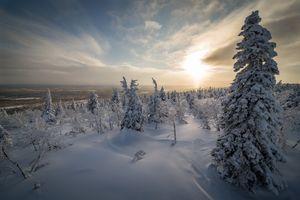 Холодный зимний день в Кунтиваара · бесплатное фото