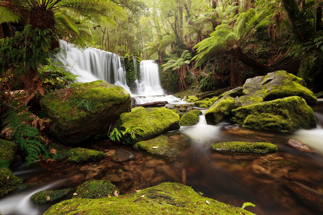 Фото бесплатно Horseshoe Falls, Mt Field National Park, Tasmania - на рабочий стол