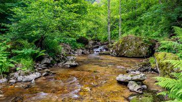 Фото река, скалы онлайн бесплатно