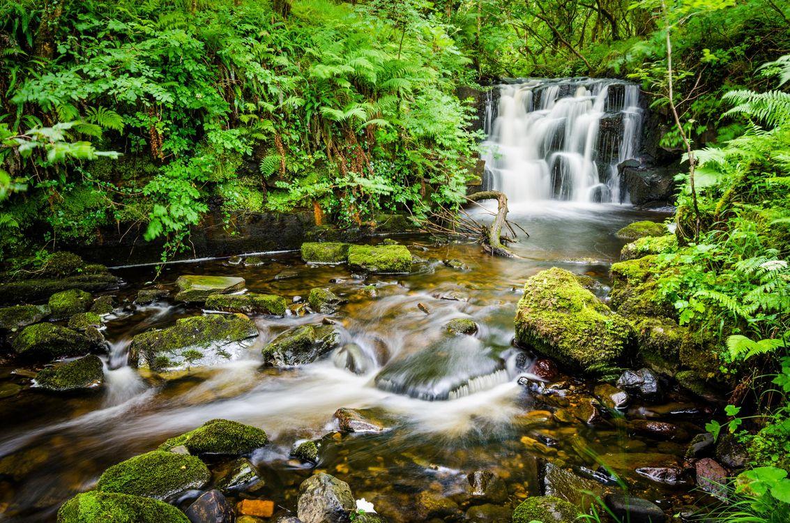 Обои Безымянный водопад, Гленифф-Подкова, Ирландия, лес, деревья, камни, скалы, река, течение, природа, пейзаж на телефон | картинки природа