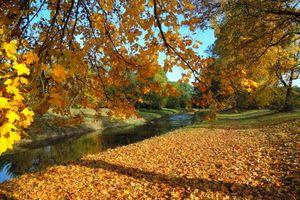 Фото бесплатно осень, река, деревья осенние листья