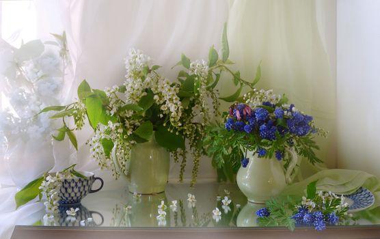 Photo free flowers, photo, still life