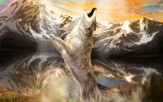 Заставки волк, вой, художественное произведение