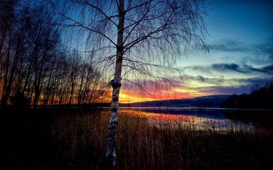 Фото бесплатно Крамфорс, небо, природа