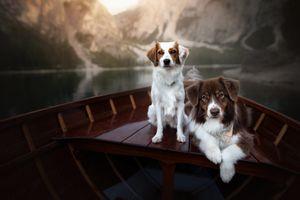 Двое в лодке, не считая фотографа · бесплатное фото