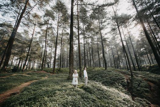 Заставки человек, мужчина, женщина, дерево, лес, на улице, вместе, пара, любовь