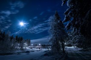 Бесплатные фото ночь,зима,сумерки,река,мост,дорога,луна