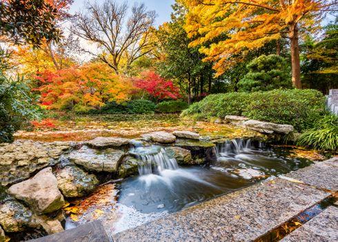 Бесплатные фото Fort Worth,United States,осень,река,парк,водопад,камни,деревья,осенние краски,пейзаж