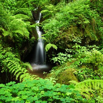 Бесплатные фото ручей,водопад,камни,мох,растения,природа,течение,пейзаж